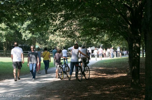 img-112-by-Volpi-090918